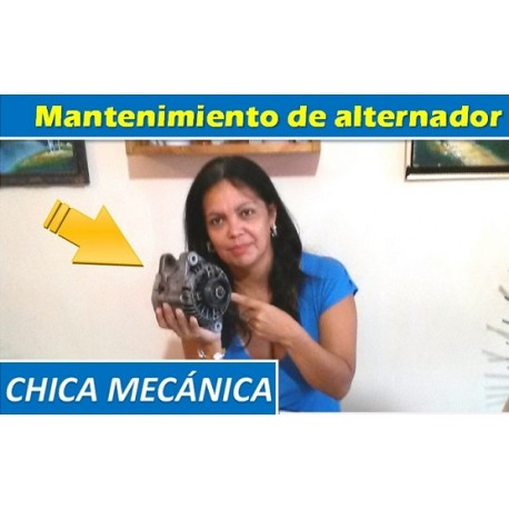 Auto alternator - Maintenance / testing