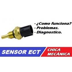 SENSOR DE TEMPERATURA DEL REFRIGERANTE DEL MOTOR (ECT)