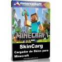 How to change the skin in Minecraft - SkinCarg Version 1.1